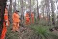 Searching bushland