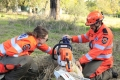 Swan SES Chainsaw Course - May 2014 - 049